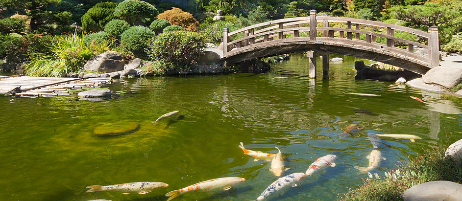 "Hakone Gardens, Saratoga CA. Wikipedia.org, ""Japanese gardens."" Modified. CC BY-SA 3.0"