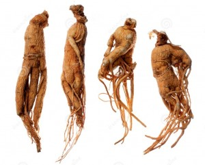 The International Trade in Ginseng and Kaesŏng Merchants 1
